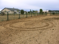 11617_submitter_file3__EarthCircles2